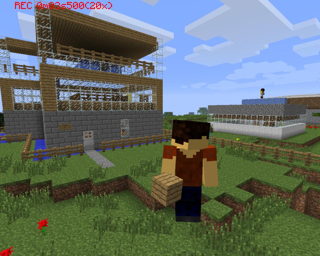 Minecraft_Situli
